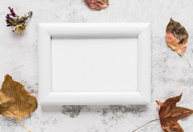Empty frame near autumn leaves on table Free Photo