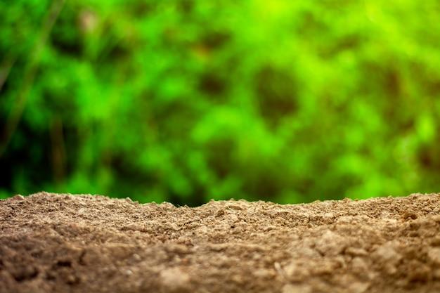 Empty ground in the summer day Premium Photo