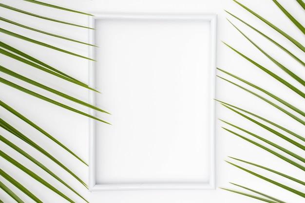 平らな面に手のひらで空の白い額縁を葉します。 無料写真