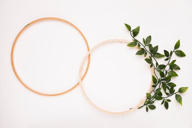An empty wooden circular frame with leaves on white backdrop Free Photo
