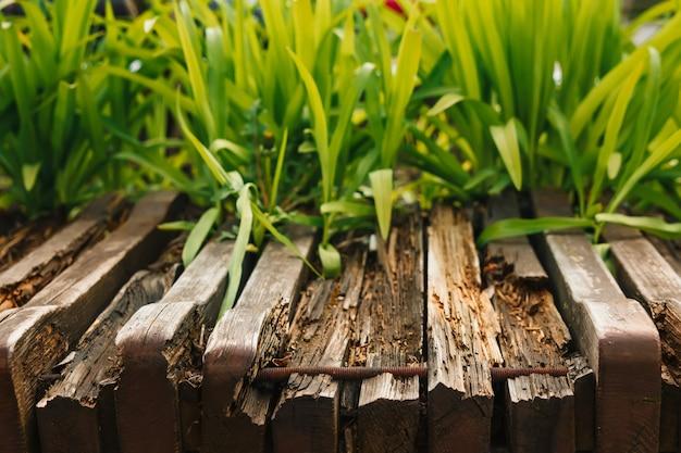 Пустой деревянный стол с садовым боке для кейтеринга или еды с загородной тематикой, шаблон макета для отображения продукта Premium Фотографии