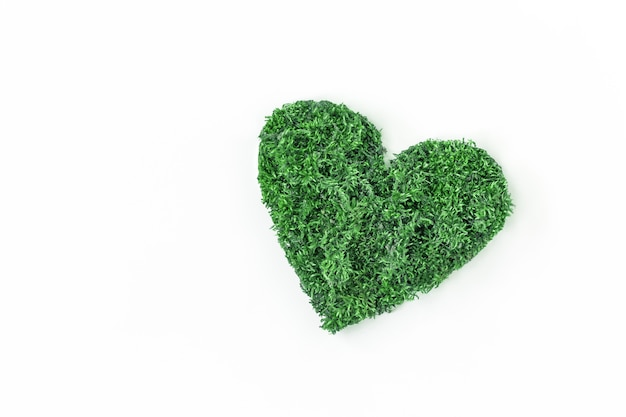 Environmental concept protection of environment and care for nature. heart of leaves on a white background copy space for text. Premium Photo