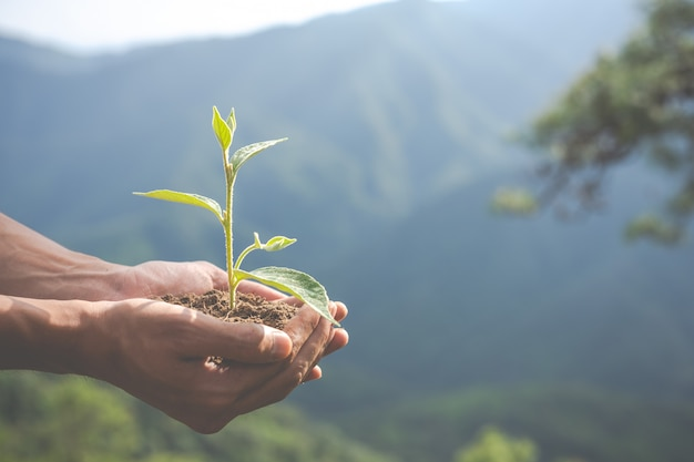 子供のための庭の環境保全。 無料写真