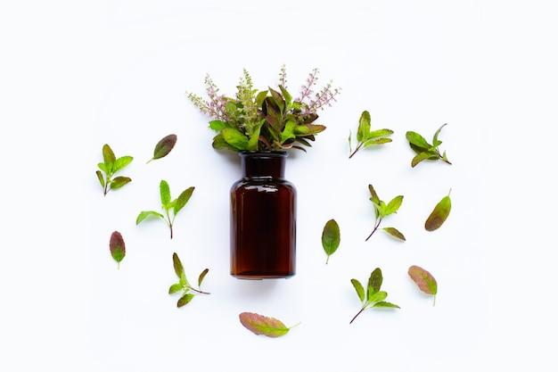 Бутылка эфирного масла со свежими листьями базилика и цветком Premium Фотографии