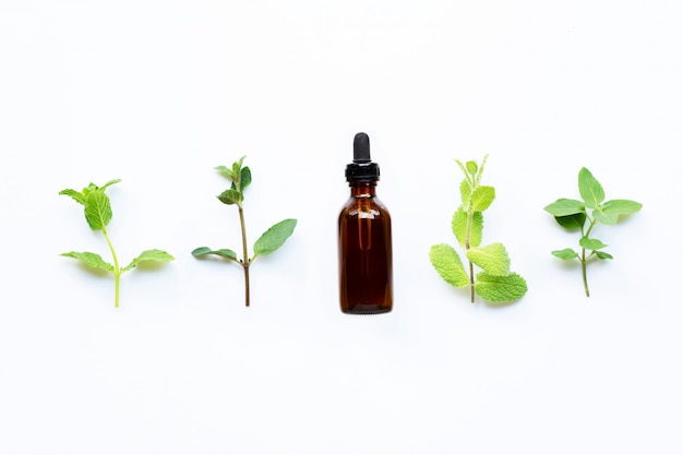 Essential oil with different types of mint on white Premium Photo