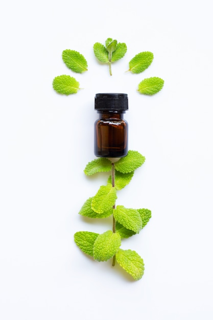 Essential oil with fresh apple mint leaves on white Premium Photo