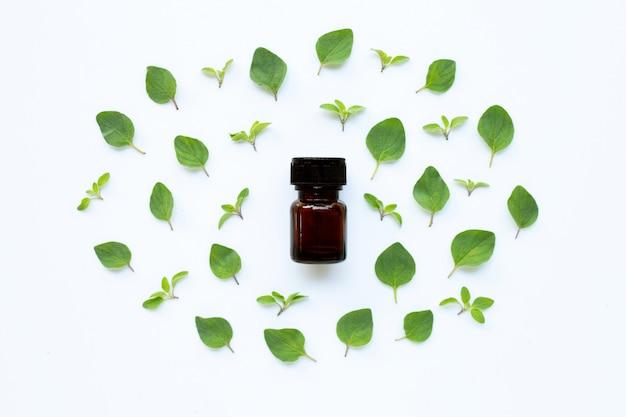 Essential oil with fresh oregano leaves on white. Premium Photo