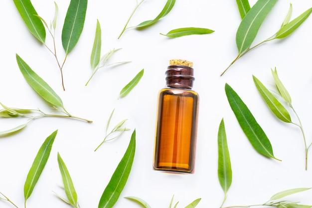 Eucalyptus essential oil bottle with  leaves on white. Premium Photo
