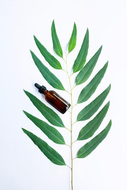 Eucalyptus oil bottle with eucalyptus branch on white background. Premium Photo