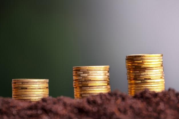 Евро монеты растут из почвы. Premium Фотографии