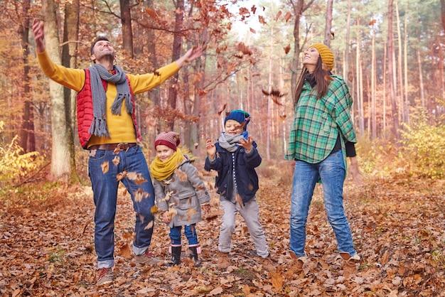 다들 숲에 나뭇잎을 던지는 걸 좋아해 무료 사진
