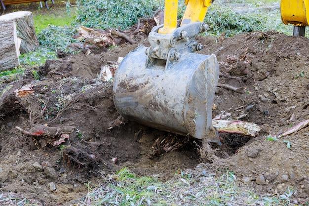 都市近郊のバックホー機械で古い木、根、枝から土地を開墾する掘削機が木を根こそぎにします。 Premium写真