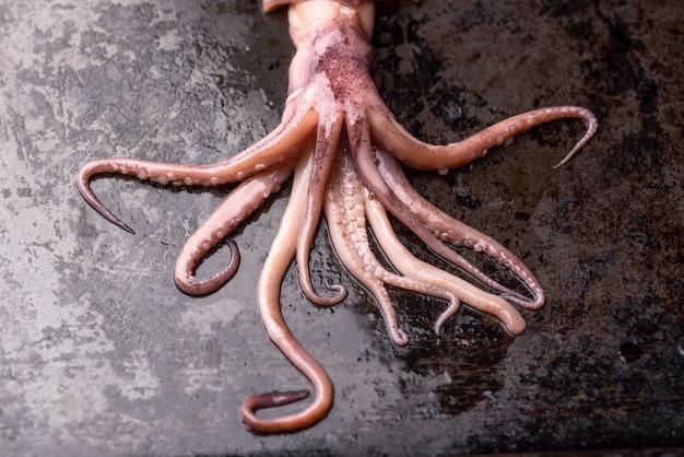 Экзотические щупальца осьминога блюдо из морепродуктов Бесплатные Фотографии