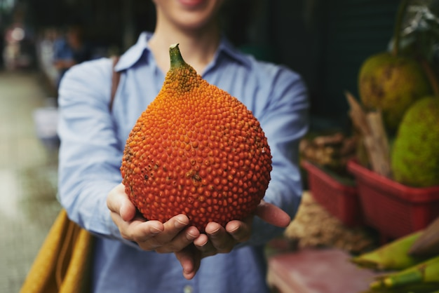 Exotic red melon Free Photo