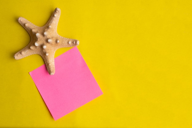 Exotic sea shell with pink note stick on a yellow background. summer vacation. Premium Photo