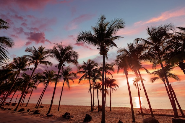Exotic tropical beach landscape for background or wallpaper. sundown beach scene for travel inspirational, summer holiday and vacation concept for tourism relaxing. Premium Photo