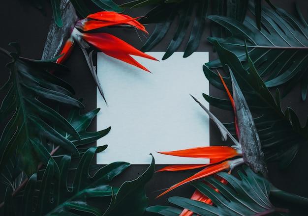 Экзотические тропические цветы и чистый белый лист Premium Фотографии