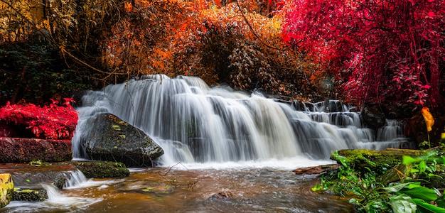 Exotic waterfall and lake landscape panoramic beautiful waterfall in rainforest at mundang waterfall national park Premium Photo