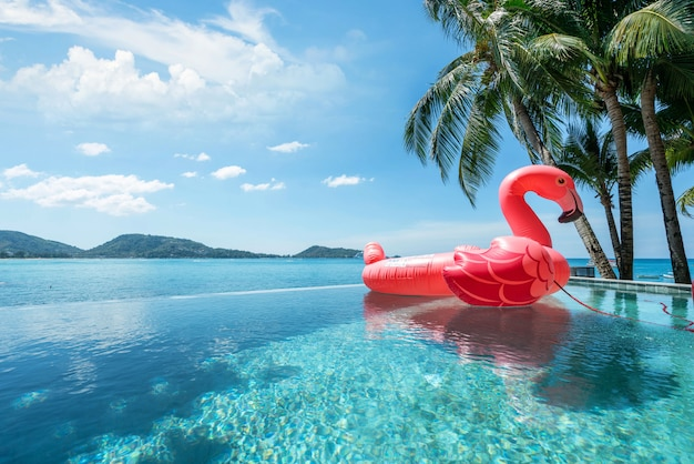 Exterior swimming pool  ,floating swan  with blue sky of ocean Premium Photo