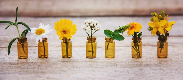 Extracts of herbs in small bottles. selective focus. Premium Photo