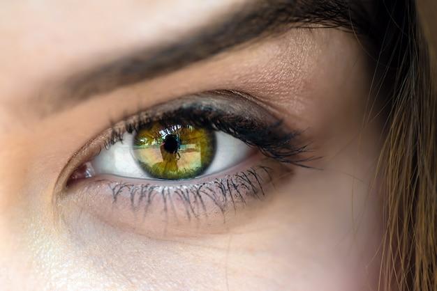Eye close up Premium Photo