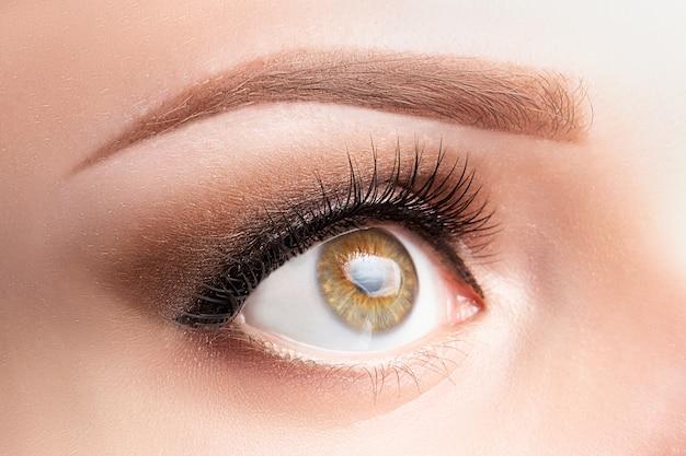 Eye with long eyelashes, beautiful makeup and light brown eyebrow close-up. Premium Photo