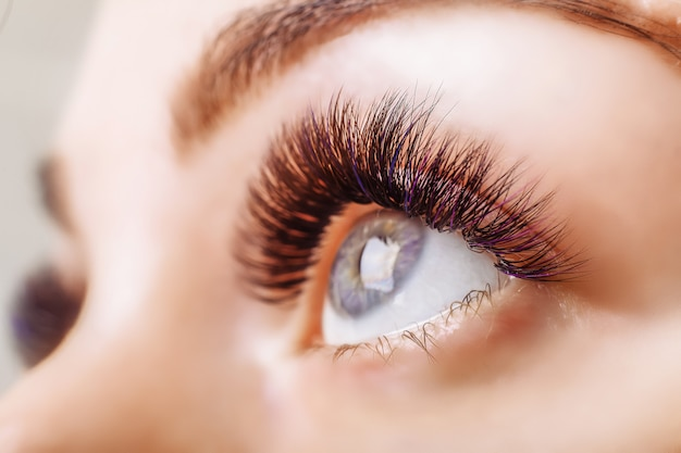 Eyelash extension procedure. woman eye with long eyelashes Premium Photo