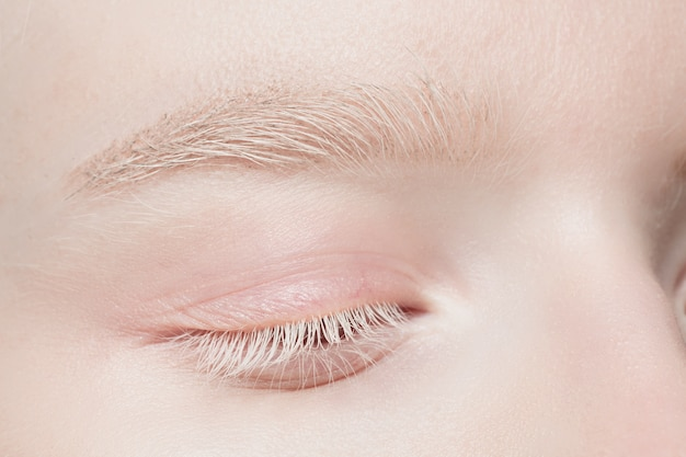 Eyelids. close up portrait of beautiful albino female model. parts of face and body. beauty, fashion, skincare, cosmetics, wellness concept Free Photo