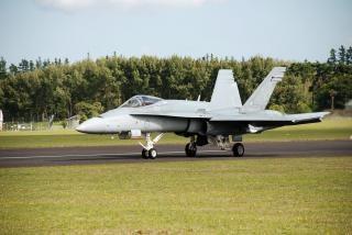 オーストラリアの空軍力f18のスズメバチ 無料写真