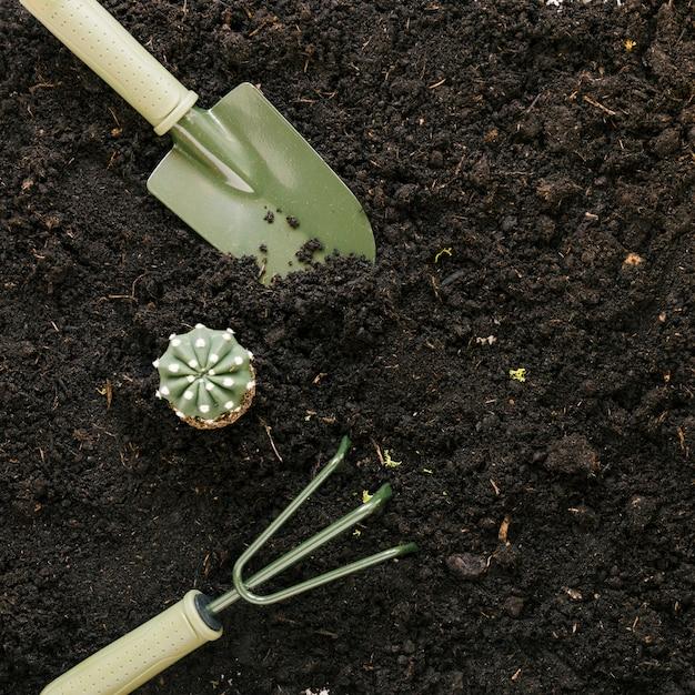 Fake cactus plant and gardening tools above black soil Free Photo