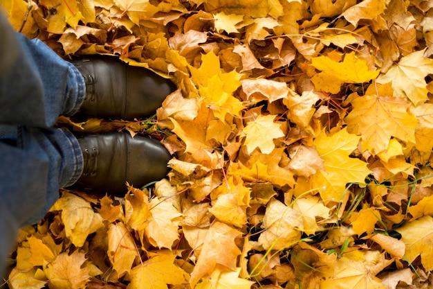 秋、秋、葉、足、靴。紅葉のブーツの足の概念的なイメージ。自然の中を歩く足の靴 Premium写真