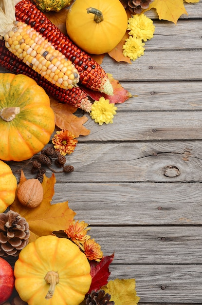 Fall background with pumpkins, top view, copy space. Premium Photo