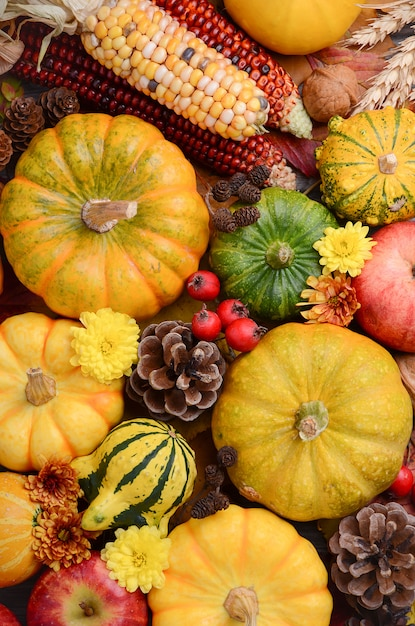 Fall background with pumpkins, top view. Premium Photo