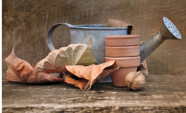 Fall gardening Premium Photo