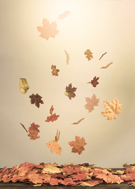 Fall leaves falling in light beam Free Photo
