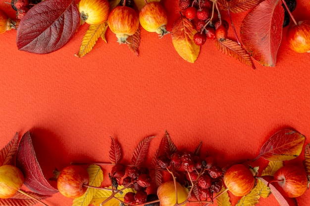 Fall leaves frame on a red background Premium Photo