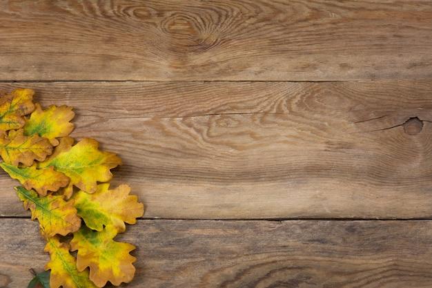 オークの葉、コピースペースを持つ素朴な背景を秋します。 Premium写真