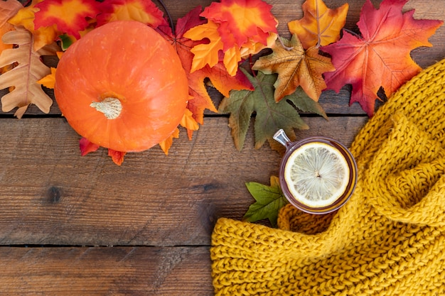 Fall season arrangement on wooden table Free Photo