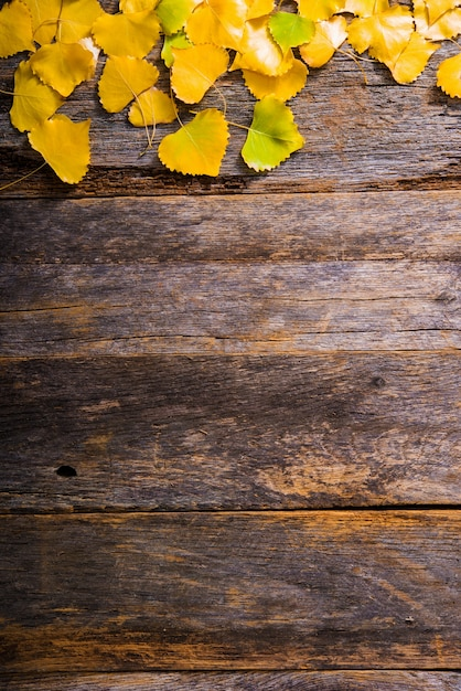 fall wooden background photo free download