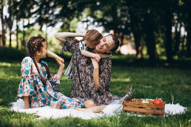 Picnic in famiglia nel parco Foto Gratuite