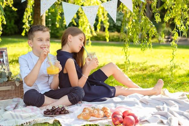 家族のピクニック 無料写真