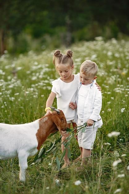 家族は村で休暇を過ごします。自然の中で遊ぶ男の子と女の子。 無料写真