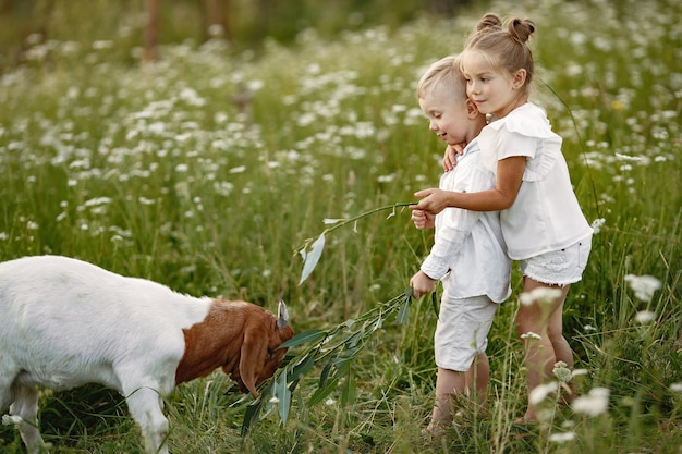 Family spends time on vacation in the village. boy and girl playing in nature. Free Photo