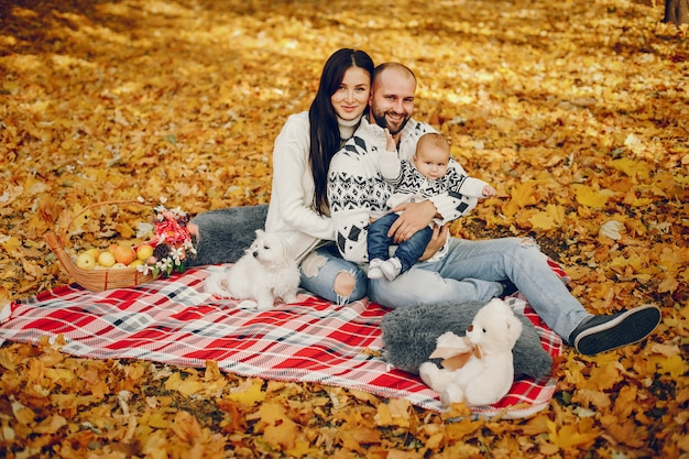 Family with son in a autumn park Free Photo