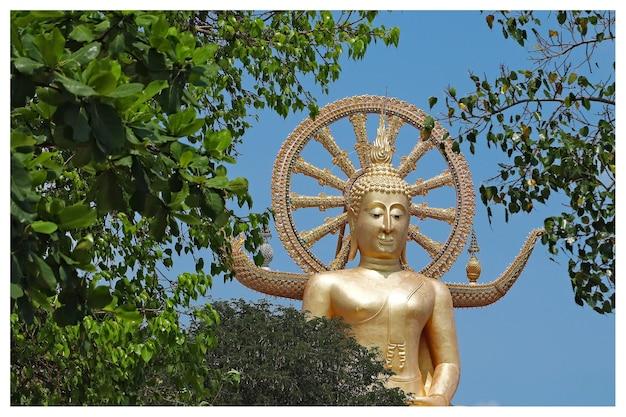 Famosa storica statua di buddha che tocca il cielo nel tempio di wat phra yai, thailandia Foto Gratuite