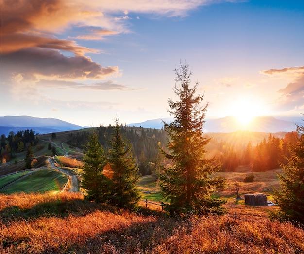 Fantastic morning countryside landscape. colorful sky. carpathian, ukraine, europe. Premium Photo