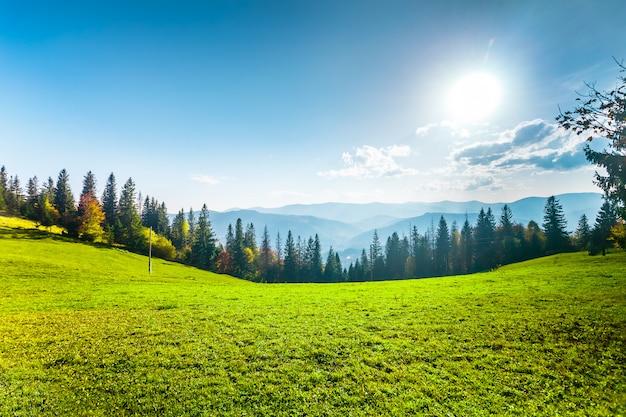 Fantastic sunny hills. Premium Photo