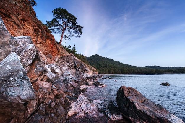 Фантастический вид на скалистый берег и волны Premium Фотографии