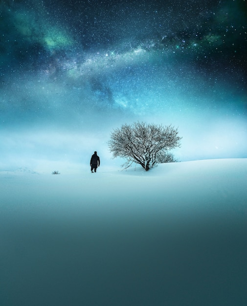 Fantasy concept of a traveler dressed in black exploring in the snow with breathtaking starry sky Free Photo