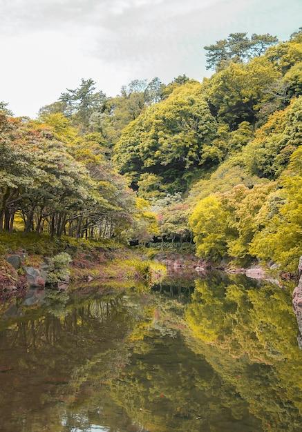 Фермы листья на открытом воздухе корея зерна Бесплатные Фотографии